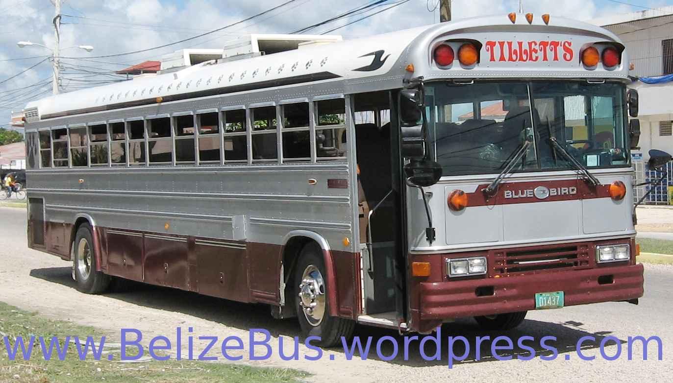 San Pedro Belize randki darmowe serwisy randkowe dla młodych wdów